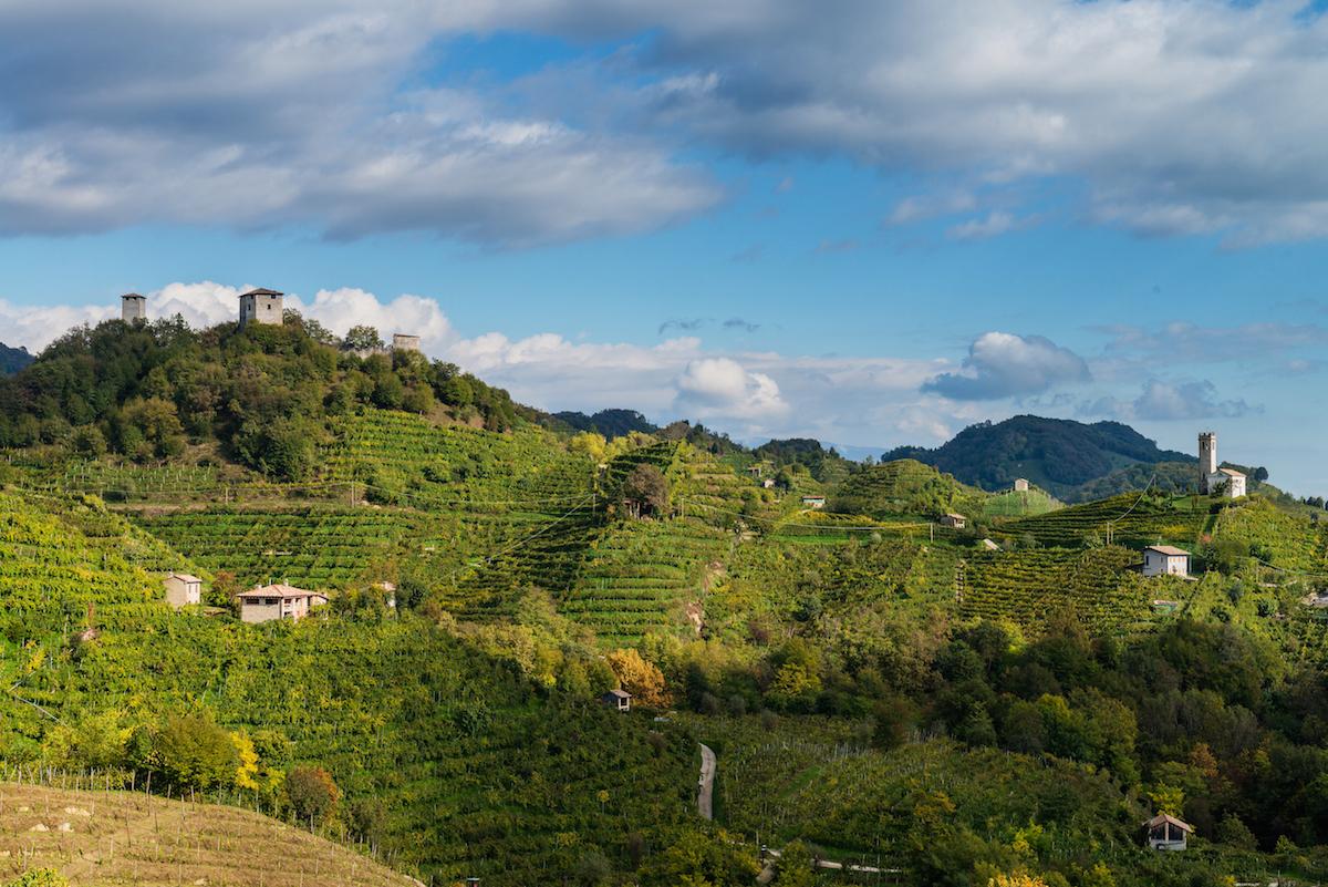 La storia del prosecco nelle colline di valdobbiadene for Planimetrie del paese di collina